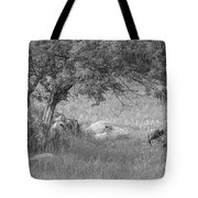 The Old Homestead 2016 Tote Bag