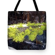 The Old Mossy Flume Tote Bag