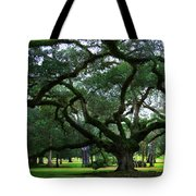 The Old Oak Tote Bag by Perry Webster