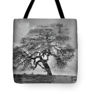 The Old Oak Tree Standing Alone  Tote Bag