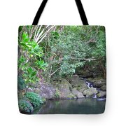 The Old Swimming Hole Tote Bag