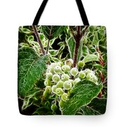 The Olde Grapevine Tote Bag
