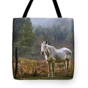 The Olde Gray Horse Tote Bag by Ken Barrett