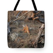 The Orange Iguana Tote Bag