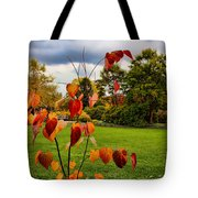 The Outcast Tote Bag