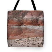 The Painted Desert  8020 Tote Bag