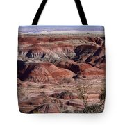 The Painted Desert  8062 Tote Bag