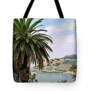 The Palm Is Always Associated With Summer, Sea, Travelling To Warm Countries And Rest Tote Bag