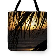 The Palm Tree In The Sunset Tote Bag by Danielle Allard