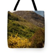 The Pap Of Glencoe Tote Bag