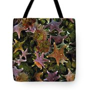 The Parade Of Stars Tote Bag