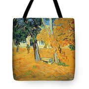 The Park At Saint Pauls Hospital Saint Remy Tote Bag