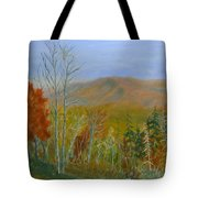 The Parkway View Tote Bag