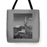 The Past Is Present Tote Bag