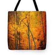 The Path To Autumn Tote Bag