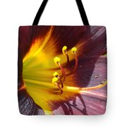 The Path To Divine Tote Bag
