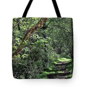 The Path We Walked Tote Bag