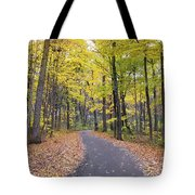 The Pathway To Fall Tote Bag