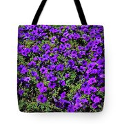 The Pathway To Purple Tote Bag