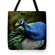 The Peacock - 365-320 Tote Bag
