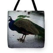 The Peacock In The Royal Garden In Winter Tote Bag