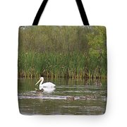The Pelican And The Ducklings Tote Bag