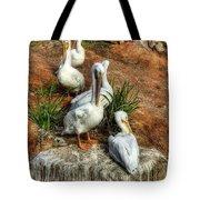 The Pelican Clan Tote Bag