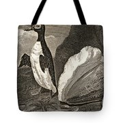 The Penguin With The Conc And Other Tote Bag
