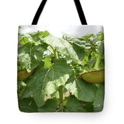 The Perfect Twin Tote Bag
