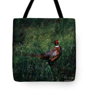 The Pheasant In The Autumn Colors Tote Bag