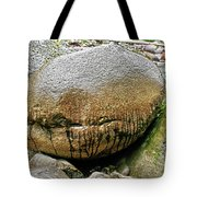The Philosophers' Stone Tote Bag
