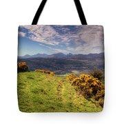 The Picnic Spot Of Dreams Tote Bag