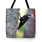 The Pileated Tote Bag