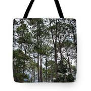 The Pines Of Tallahassee Tote Bag