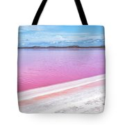 The Pink Diagonal Tote Bag