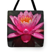The Pink Water Lily Tote Bag