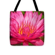 The Pinkest Of Pinks Tote Bag by Lori Frisch