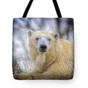 The Polar Bear Stare Tote Bag