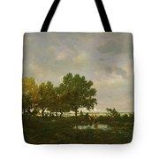 The Pond, La Mare Tote Bag