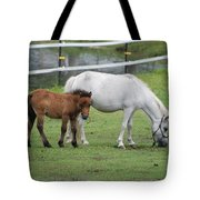 The Ponys Tote Bag
