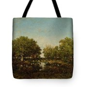 The Pool, Memory Of The Forest Of Chambord Tote Bag