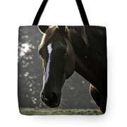 The Portrait Of The Horse Tote Bag