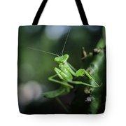The Praying Mantis Tote Bag