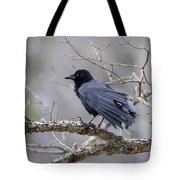 The Preening Crow Tote Bag