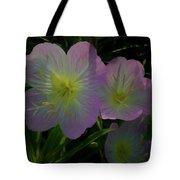 The Primroses Tote Bag