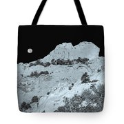 The Profile Of An Uncouth Guy Etched In Stone  Tote Bag