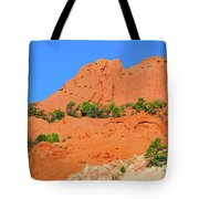 The Profile Of An Aborigine Celebrity  Tote Bag