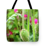 The Promise Of April Showers Tote Bag