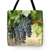 The Promise Of New Wine Tote Bag