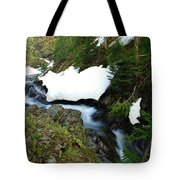 The Promise Of Things Tote Bag by Jeff Swan